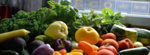 Vegetables-at-ECO-Viviana-Lindo