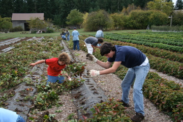 Lopez Island Farm Education (L.I.F.E.) Garden Program